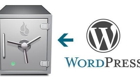 7 Points to take care while Taking WordPress Backups
