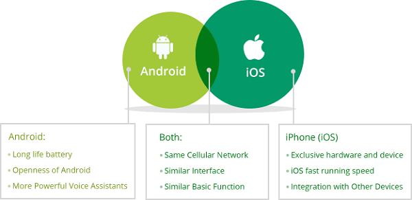 Comparison Of Features