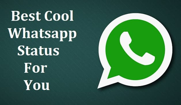 Top 100 Cool Attitude Whatsapp Status for Friends, & Lovers